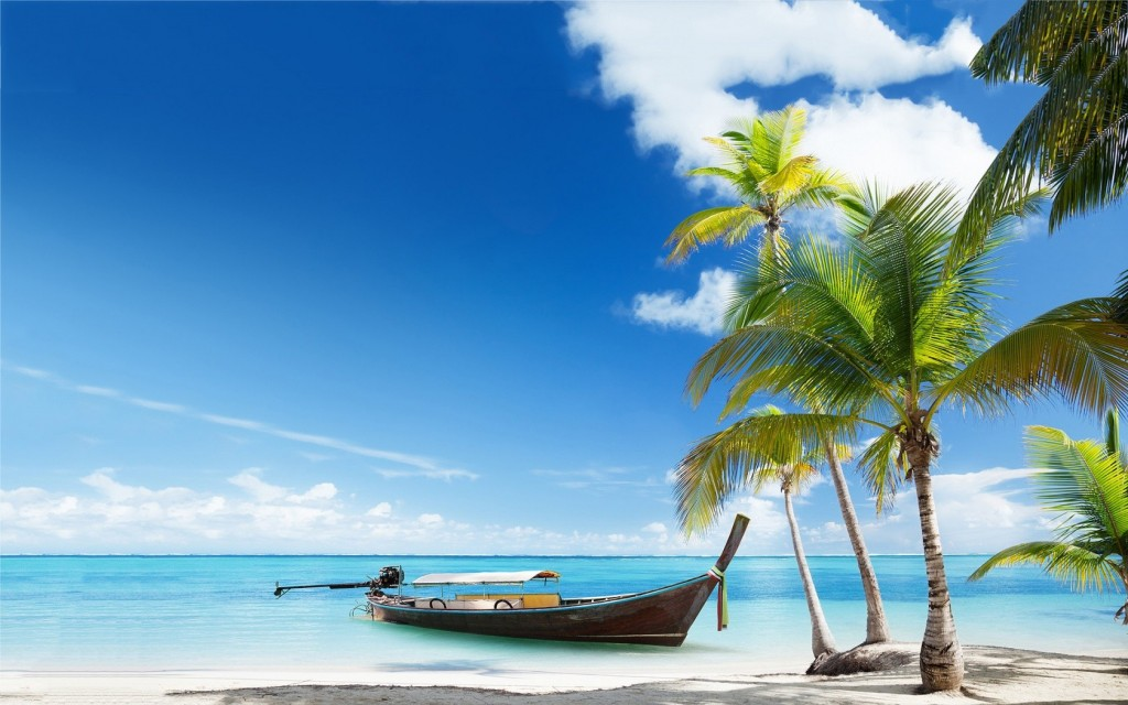 Spark Global Business Caribbean